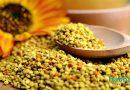 Manfaat Bee Pollen Untuk Kesehatan